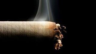 видео Бронхит курильщика: симптомы и лечение