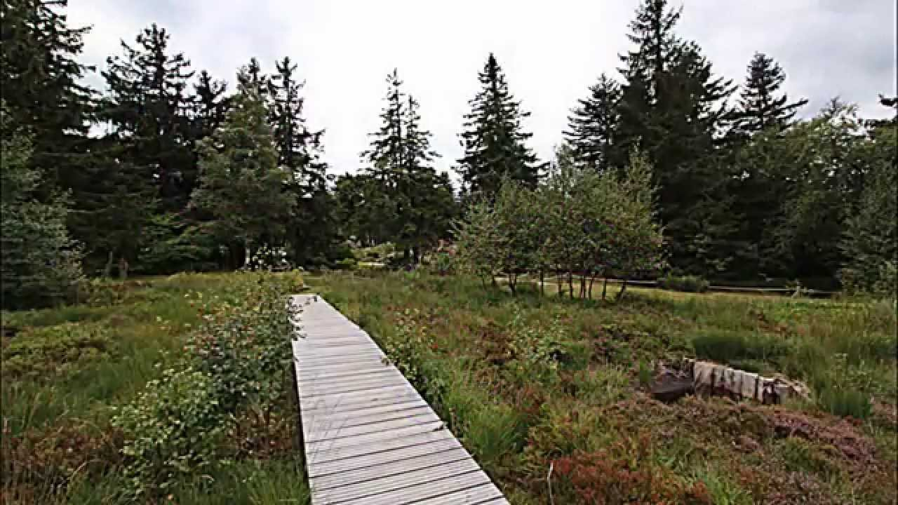 Jardin d 39 altitude du haut chitelet youtube - Jardin d altitude du haut chitelet ...