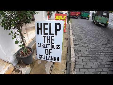 Sri Lanka Travel - Galle Fort, Hikkawadu  to Colombo