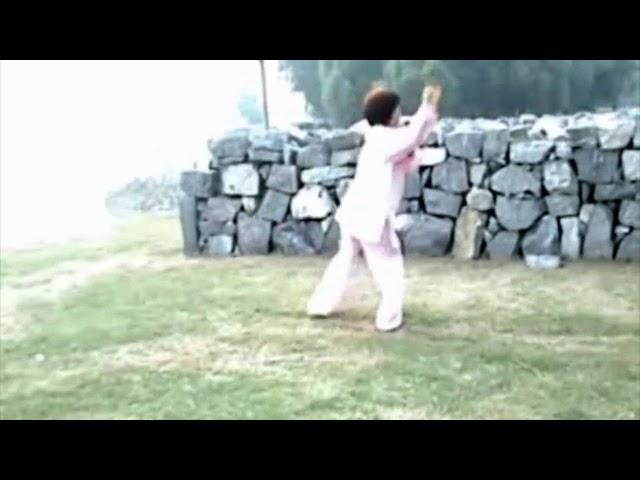 Chen Shu Li - Tai Chi style Chen Xiaojia Epée