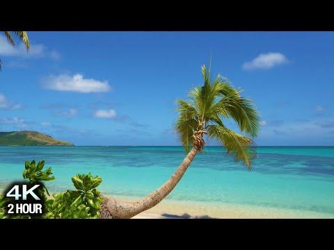"""Blue Lagoon Vista"" 4K 2 Hour Nature Scene: Tropical Beach, Palm Tree, Blue Sky & White Sand - Fiji"