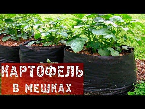 """""""уДачное настроение"""" №116. 2013."""