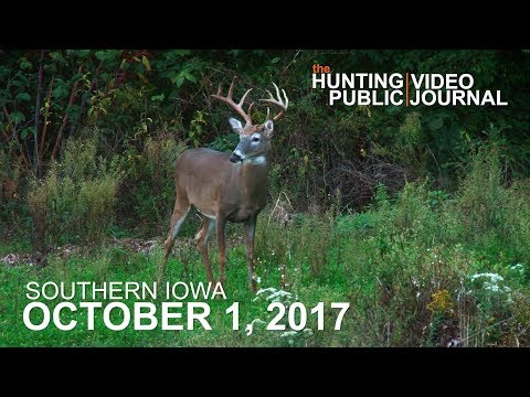 Private Land: October 1 - Opening Morning, Hunting Food Close To Bedding | The Hunting Public