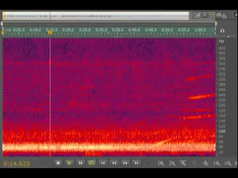 Windsor Hum - Recorded August 24, 2011 @11:12pm EST