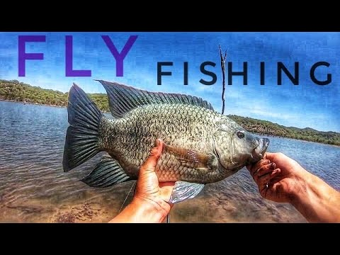 Fly Fishing For Tilapia & Tiger Fish
