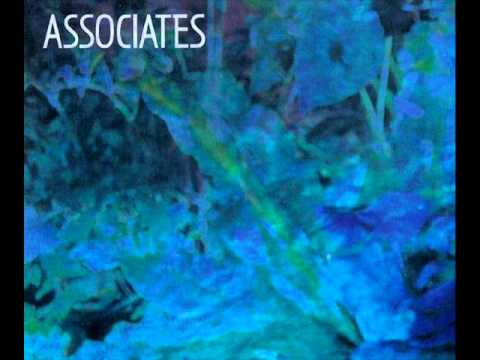 Associates - David Jensen BBC Radio One Session 1983-11-23