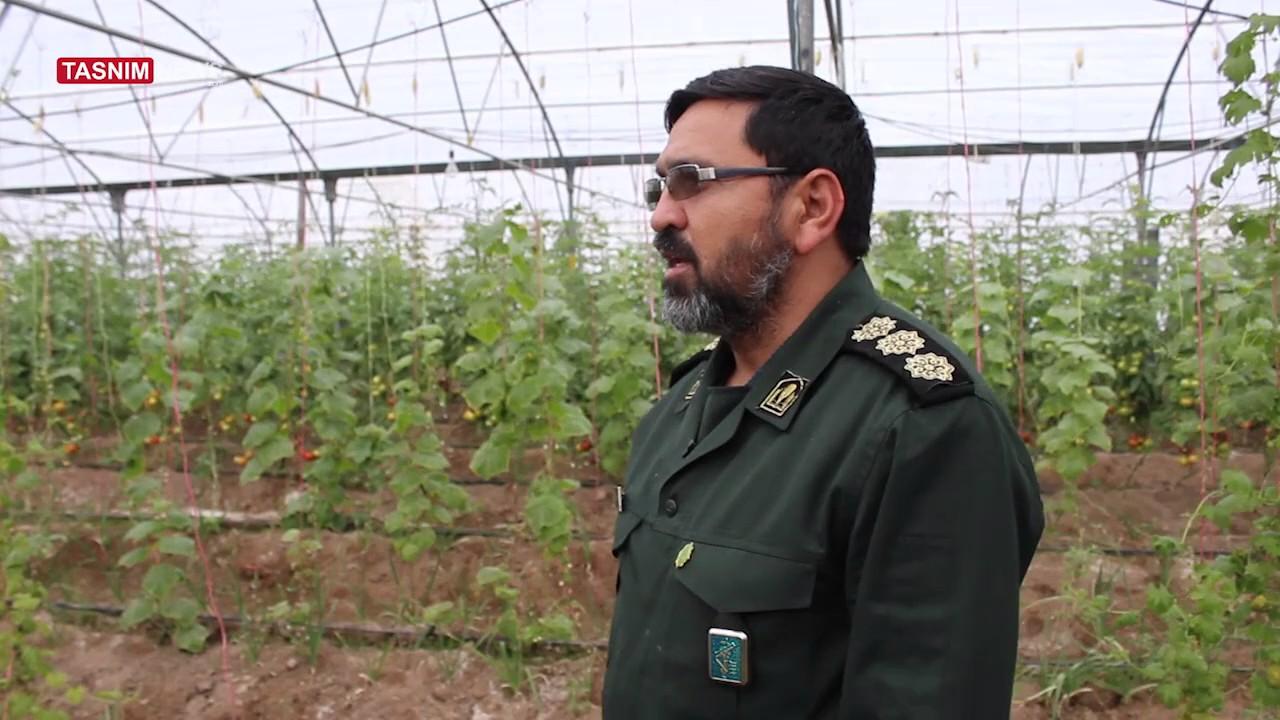 آموزش کشاورزی مدرن توسط سپاه در زاهدان