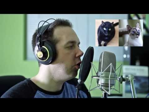 N2 the Talking Cat S3 Ep3 Behind the Scenes