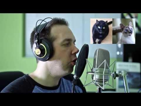 N2 the Talking Cat S3 Ep3 Behind the Scenes