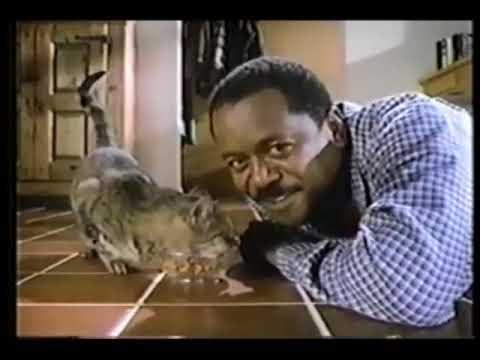 Tender Vittles Cat Food 1980s Commercial Youtube