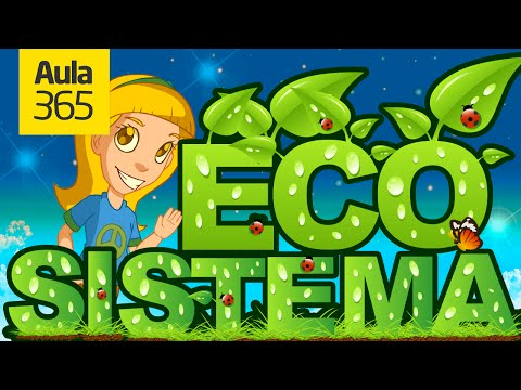 What is an Ecosystem? - Aula365