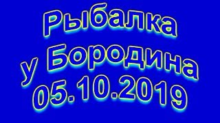 Рыбалка у Бородина 05 10 2019