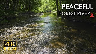 4K Peaceful Forest River 2 - Relaxing Water Stream Sounds - 9 Hours - Nature Video for Sleeping