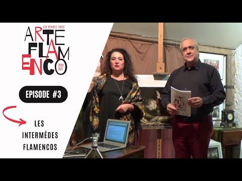[ Épisode 3 ] Les Rendez-vous Arte Flamenco, c'est aussi des Intermèdes flamencos