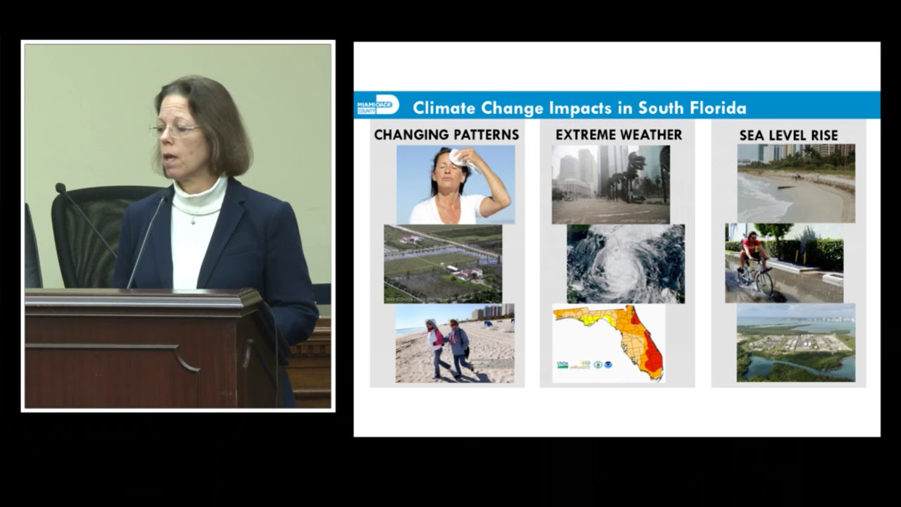 Climate change and the coast : building resilient communities