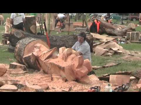 Thumbnail: Barbara & Alan record Chainsaw Wood Sculptures at Woodfest Wales