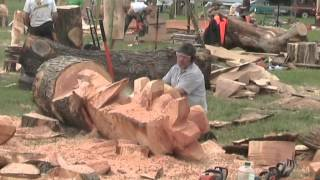 Barbara & Alan record Chainsaw Wood Sculptures at Woodfest Wales