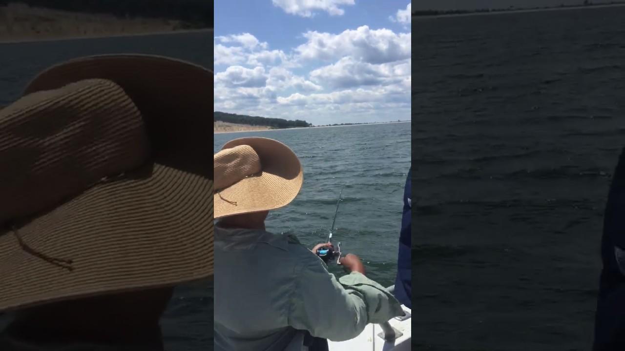 Sound bound fishing wednesay so far youtube for Sound bound fishing