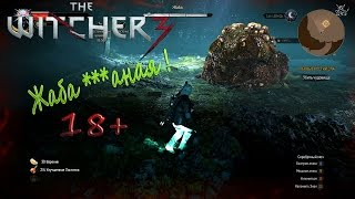 The Witcher 3  Hearts of Stone - [#1] Жаба Мега Босс