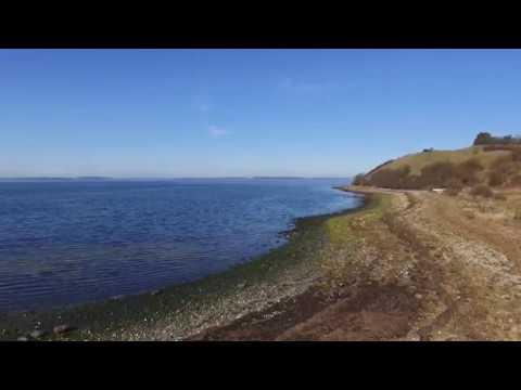 Download Drone flight Ejby Ådal