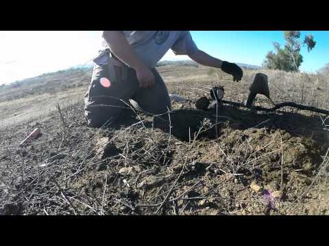 Metal Detecting At An Old Gold Mine