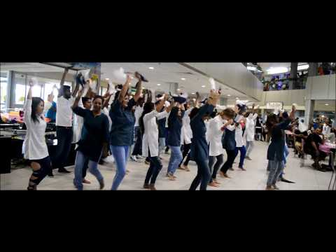 Island Brush Bollywood Flashmob at Flacq Coeur de Ville Mall, Mauritius (Official)