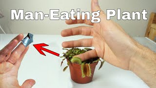I Let a Venus Flytrap Digest My Finger For a Day-Little Shop of Horrors Challenge!