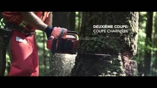 Comment couper un arbre | Husqvarna Canada