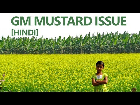 [Genetically Modified] GM mustard Issue ( Know about GM crops) [Hindi] by Deepanshu Singh