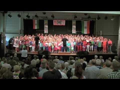 You Raise Me Up - Josh Groban - Amazing choir cover