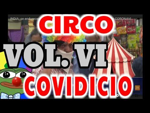 CIRCO COVIDICIO VOL.VI (AVES Y PERROS)