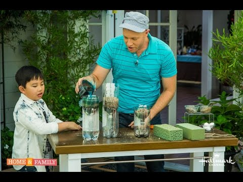 Water Filter Science Project