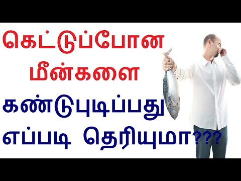 How to find spoiled fish or fresh fish in Tamil   Tamil health tips
