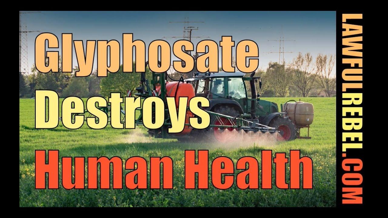 Glyphosate Destroys Health - with Dr Stephanie Seneff -