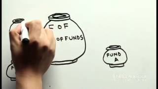 Fund of Funds (FOF) Scheme.