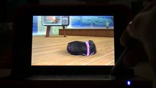 nintendogs+cats :comment avoir des pts propriètaire