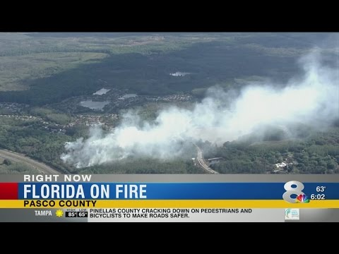 Florida on fire
