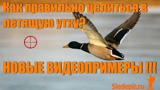 Как целится в летящую утку 2! НОВЫE СУПЕРВИДЕО С ПРИМЕРАМИ!!!