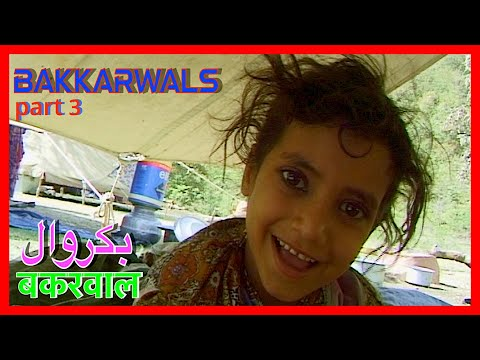 Bakkarwals (part-3of4)