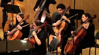 Tchaikovsky - Andante Cantabile. Tel-Aviv Soloists/Barak Tal