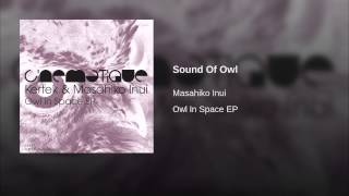 Sound Of Owl