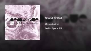 Sound Of Owl
