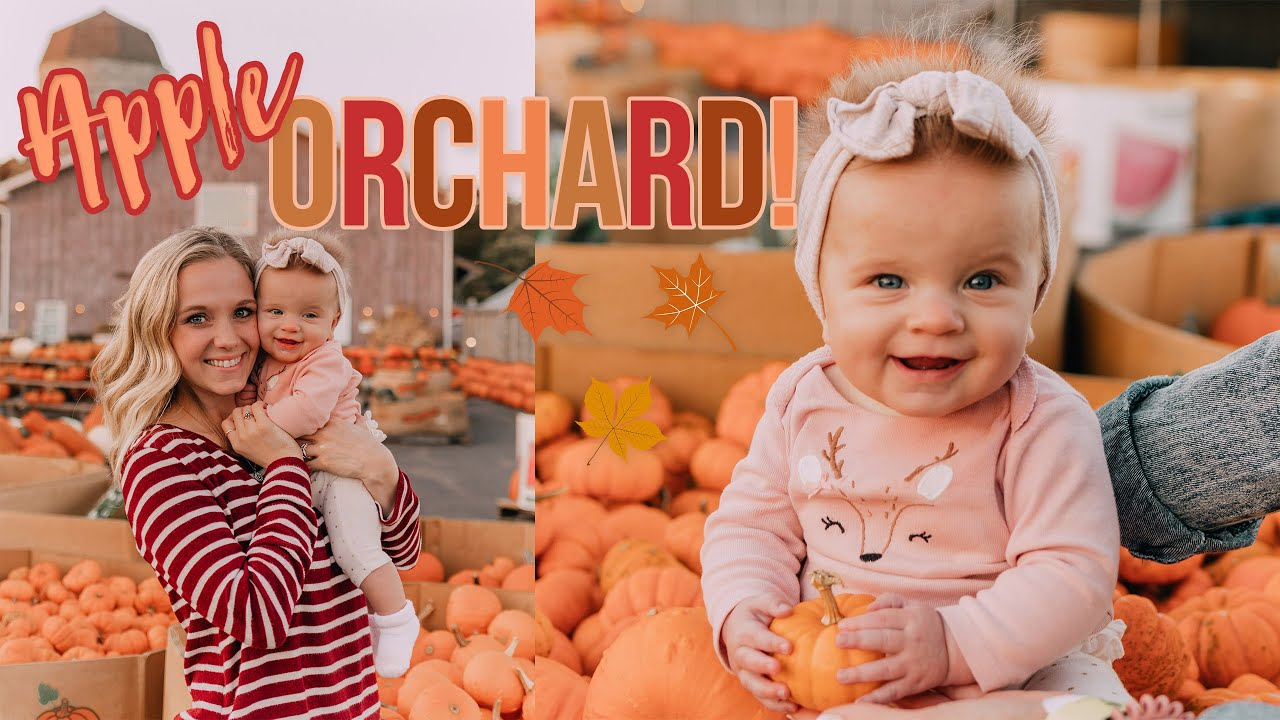 APPLE ORCHARD + FALL ROADTRIP! Fall Week in my Life! :)