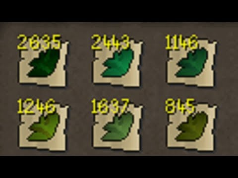 HC - Ep 65 - Time for Herblore