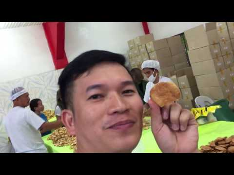 Manila - Baguio Tour Part 12 - EBS Foods Bakery Tour   Us with the SNAKE   ASIDORS VLOGS