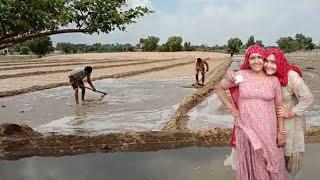 नहरों का पानी खेतों में कैसे लगाते हैं,  ऐसा नजारा आपने नहीं देखा होगा। village life in India