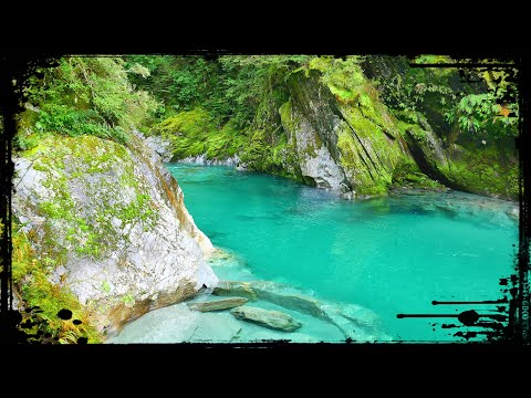 DREAMWORLD! Blue Pools and Blue Valley Track | Haast Pass, New Zealand