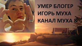МУХА 8 УМЕР муха8 игорьмуха