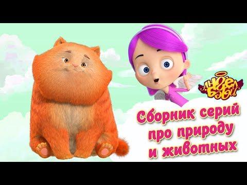 Ангел Бэби - Сборник серий про природу и животных   Развивающий мультфильм для детей