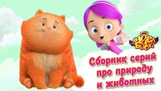 Ангел Бэби - Сборник серий про природу и животных | Развивающий мультфильм для детей